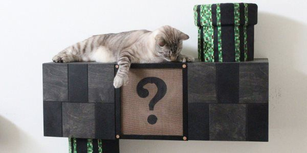 Get High-Quality Custom Cat Trees at Affordable Cost