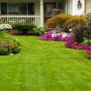 landscaping in Chester